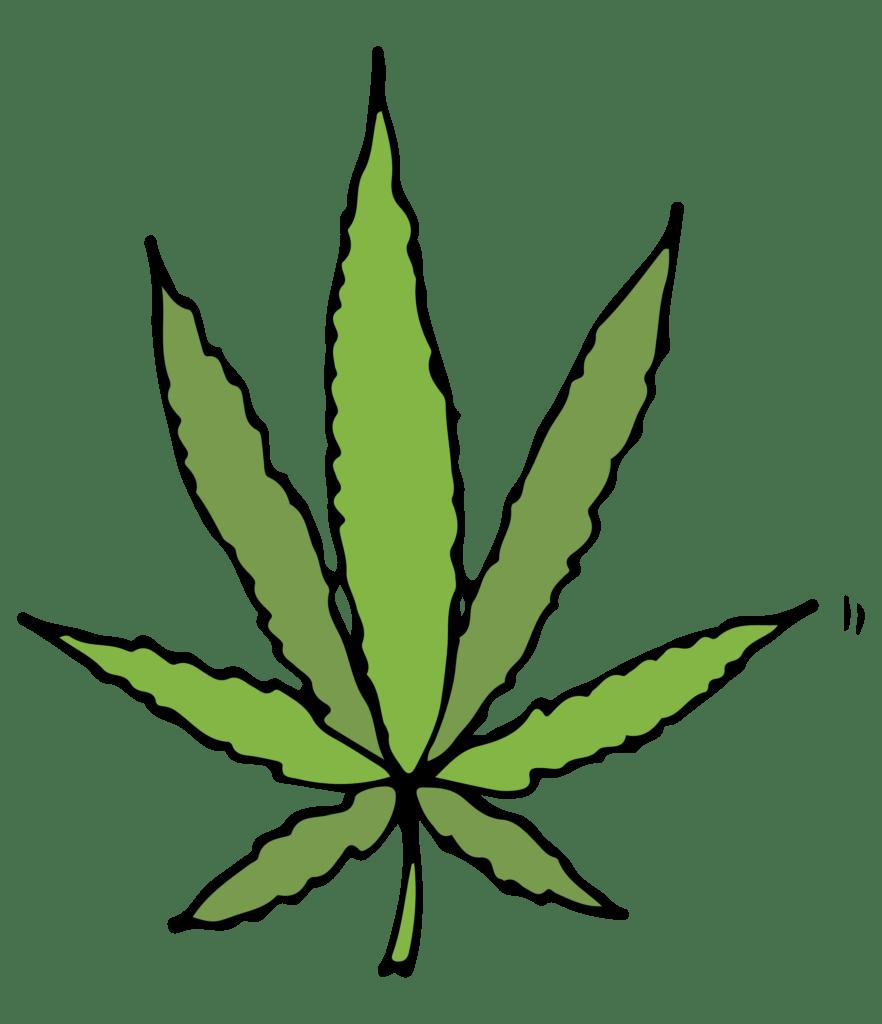 Custom Illustrations For Cannabis Testing Laboratory Natasha Pankina Illustrations